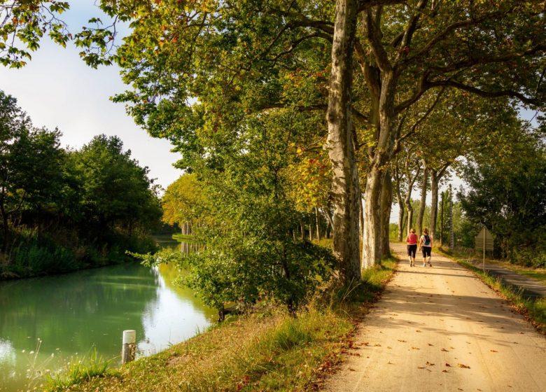 Canal du Midi balade randonnée © Aspheries