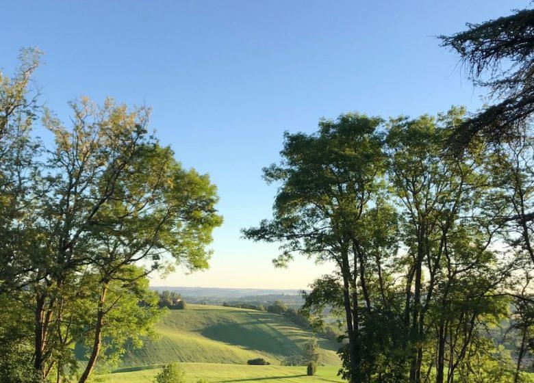 Domaine de Montgay vue côteaux