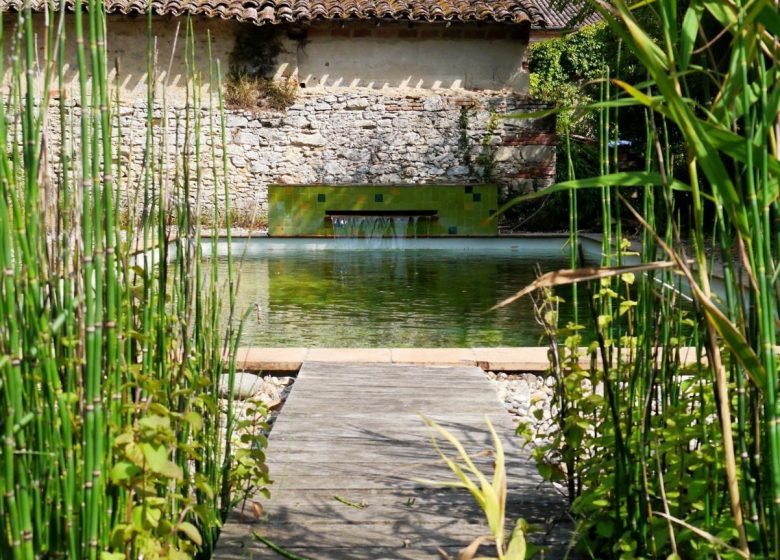piscina natural_11